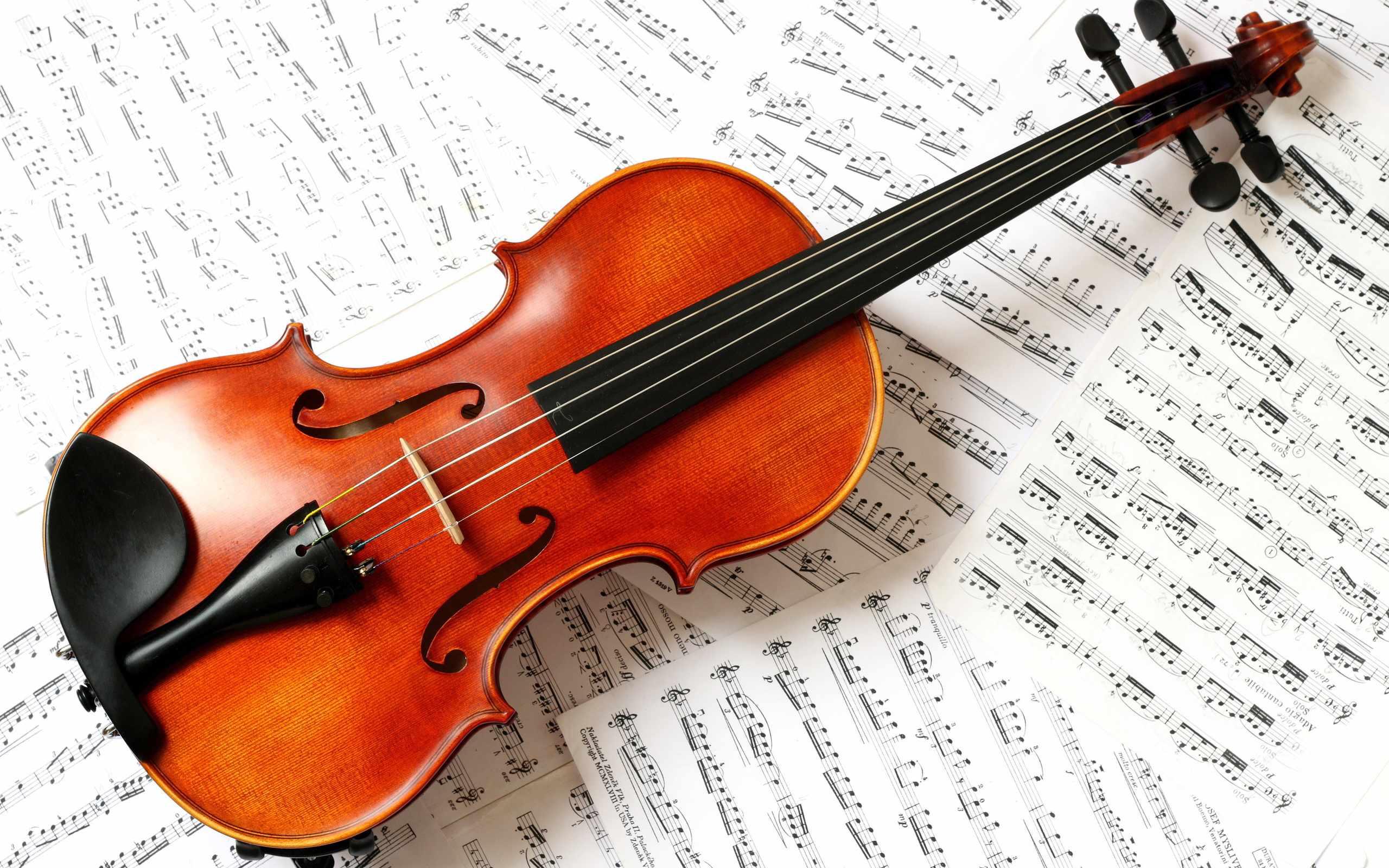 Rezultat iskanja slik za violina
